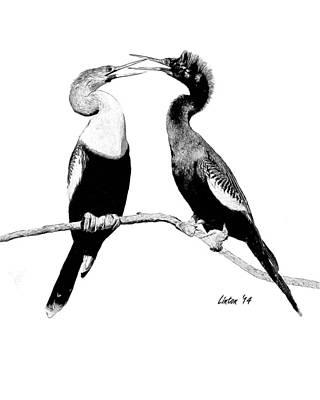 Anhinga Digital Art - Anhinga Pair by Larry Linton