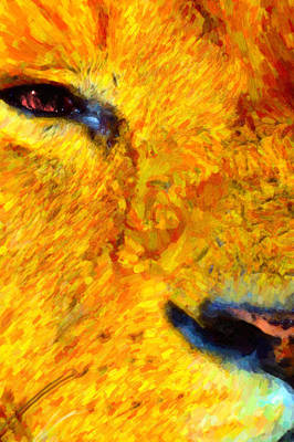 Animal Eye Lion Art Print