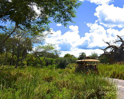 Photograph - Animal Kingdom Safari by Carol  Bradley