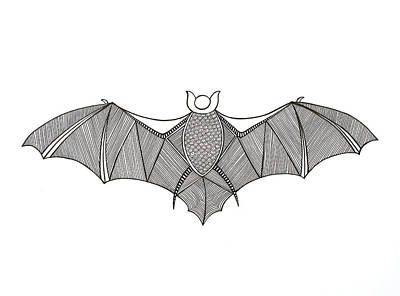 Fun Drawing - Animals Bat by Neeti Goswami