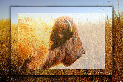 Digital Art - animals - bison - Spirit of The Tall Grass  by Ann Powell