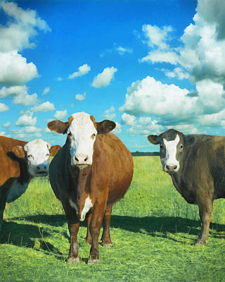 Painting - animals - cows - Guardians of the Prairie  by Ann Powell