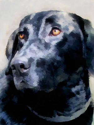 Digital Art - animals - dogs - Black Lab by Ann Powell