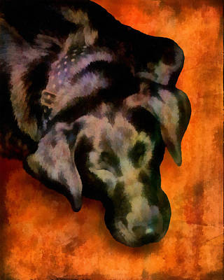 Labrador Retriever Digital Art - animals- dogs Sleeping Dog by Ann Powell