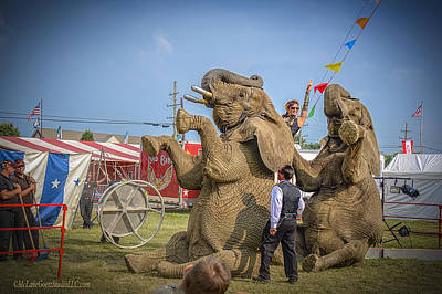 Elephant Photograph - Animals In Circus by LeeAnn McLaneGoetz McLaneGoetzStudioLLCcom
