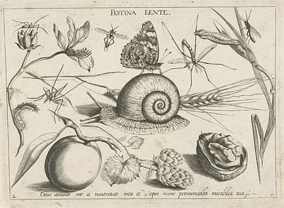 Peach Drawing - Animals, Plants And Fruits Around A Snail by Jacob Hoefnagel And Joris Hoefnagel And Christoph Weigel