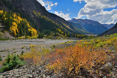 Photograph - Animas River Fall Color by Ray Mathis