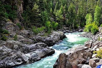 Photograph - Animas River by Gerald Greenwood