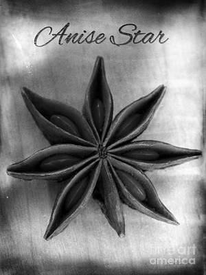 Aniseed Photograph - Anise Star Single Text Distressed Black And Wite by Iris Richardson