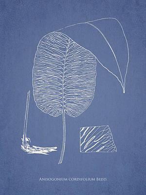 Anisogonium Cordifolium Art Print