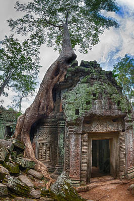 Ficus Photograph - Angkor Wat by Stelios Kleanthous