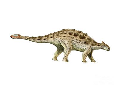 Ankylosaurus Armored Dinosaur Print by Nobumichi Tamura