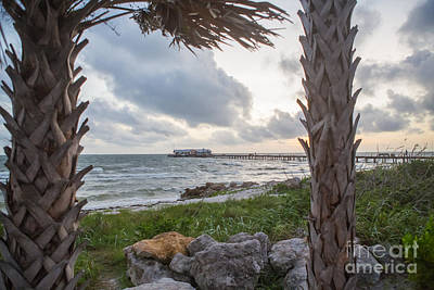 Anna Maria City Pier Art Print by Kay Pickens