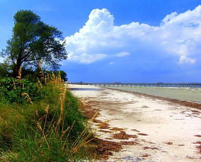 Photograph - Anna Maria Island View by Lou Ann Bagnall