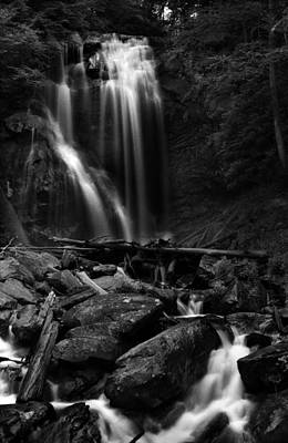 Photograph - Anna Ruby Falls Right Side by Greg and Chrystal Mimbs