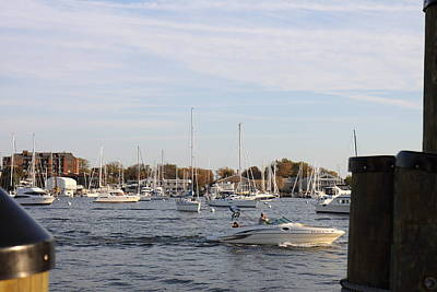 Annapolis Md - 121245 Print by DC Photographer