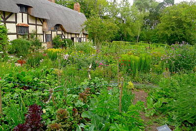 Photograph - Anne Hathaway Cottage And Garden by Denise Mazzocco