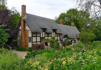 Photograph - Anne Hathaway's Cottage by Denise Mazzocco