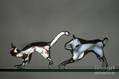 Glasswork Photograph - Annealed And Unannealed Glass by James L. Amos
