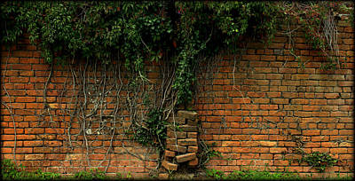 Elmwood Cemetery Photograph - Another Brick In The Wall by Shannon Louder