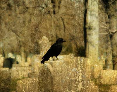 Birds In Graveyard Photograph - Another Day For Crow In The Graveyard by Gothicrow Images