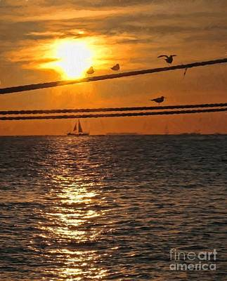 Photograph - Another Key West Sunset by Peggy Hughes