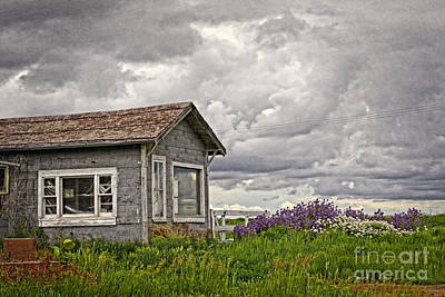Haunted House Photograph - Another Spring by Charline Xia