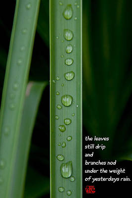 Haiku Wall Art - Photograph - Another Summers Morning by W Chris Fooshee