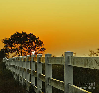 Another Tequila Sunrise Art Print by Robert Frederick