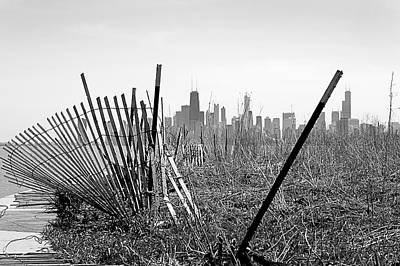 Photograph - Another View Of Chicago by Milena Ilieva