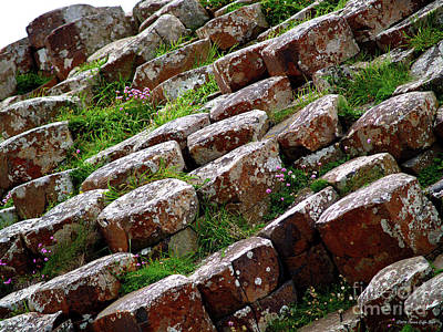 Photograph - Another View Of The Giant's Causeway by Patricia Griffin Brett