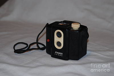 Photograph - Ansco Panda by Mark McReynolds