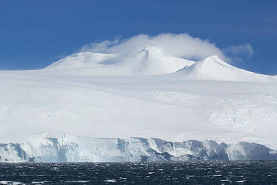 Photograph - Antarctica by Ginny Barklow