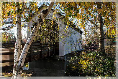 Photograph - Antelope Creek Bridge Autumn by Mick Anderson