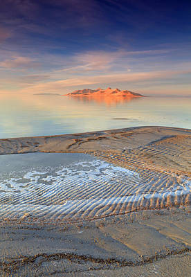 Photograph - Antelope Island by Johnny Adolphson