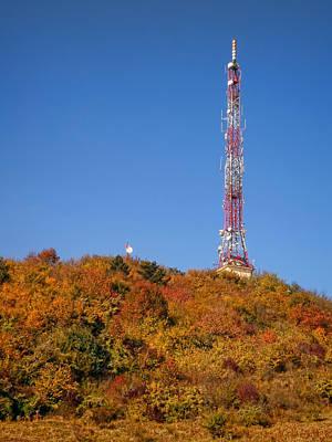 Antenna In Autumn Forest Original
