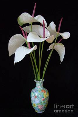 Anthurium Bouquet Art Print by Mary Deal