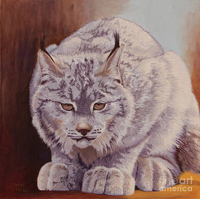 Anticipation Before The Pounce Art Print