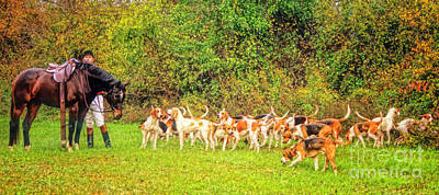 Foxhound Photograph - Anticipation by Olahs Photography