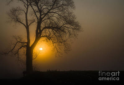 Photograph - Antietam Morning by Ronald Lutz