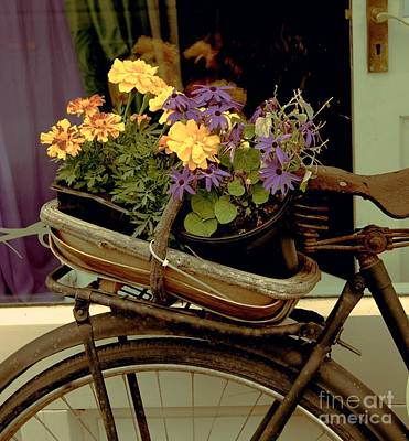 Painting - Antique Bike And Flowers by Louise Fahy