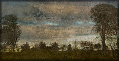 Photograph - Antique Blue Landscape by Liz  Alderdice
