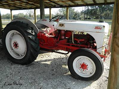 Photograph - Antique Ford Tractor by George Pedro