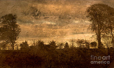 Photograph - Antique Golden Landscape by Liz  Alderdice