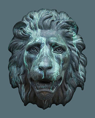 Photograph - Antique Lion Face In Blue by Jane McIlroy