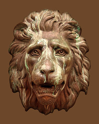 Photograph - Antique Lion Face In Brown by Jane McIlroy