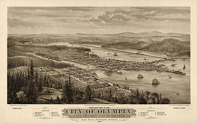 Drawing - Antique Map Of Olympia Washington By E.s. Glover - 1879 by Blue Monocle