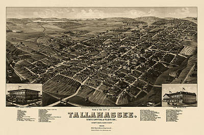 Antique Map Of Tallahassee Florida By H. Wellge - 1885 Art Print by Blue Monocle
