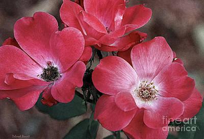 Threesome Photograph - Antique Roses by Deborah Benoit