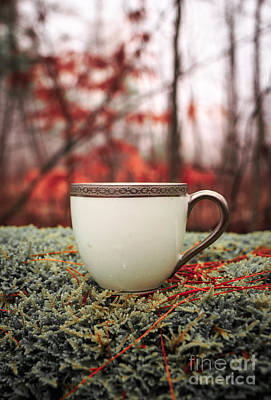 Tea Photograph - Antique Teacup In The Woods by Edward Fielding
